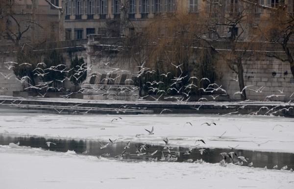 Glace neige ©Godet_3377